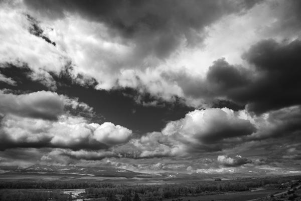 Black & White Photographer